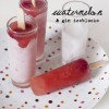 Watermelon, Raspberry & Gin Iceblocks